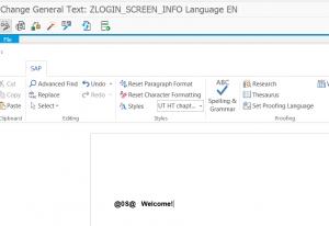 ZLOGIN_SCREEN_INFO text