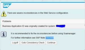 Webservice setup issue after system copy